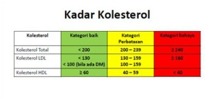 kadar-kolesterol-normal